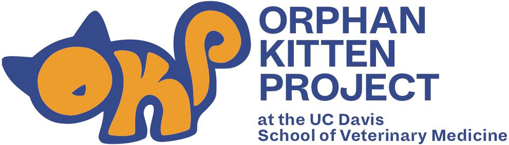 Orphan Kitten Project